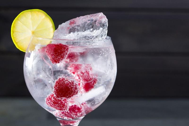 Taça com drink de gin e framboesas decorado com uma rodela de limão