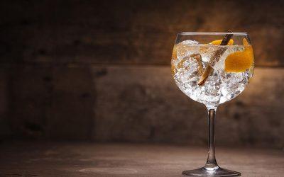 Você conhece qual é a taça ideal para gin?