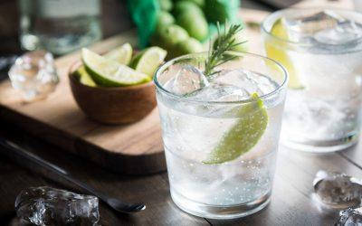 Como escolher a água tônica ideal para meu drink com gin?