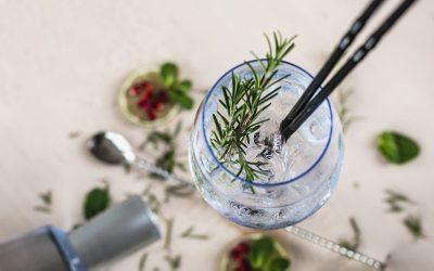 Gin: porque essa bebida tornou-se a queridinha do momento?