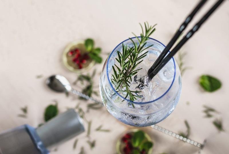 Gin - A Bebida do momento