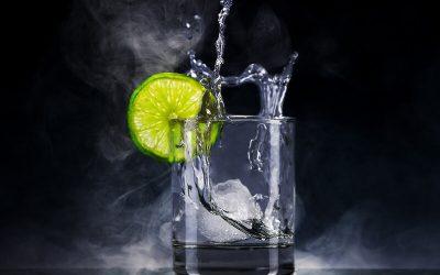4 diferenças entre Gin e vodka
