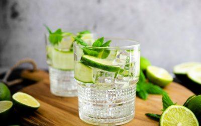 Conheça os passos para preparar um Gin fizz com hortelã