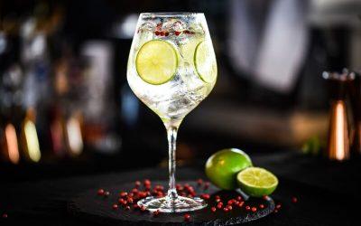 Gin com pimenta rosa: saiba tudo sobre essa combinação